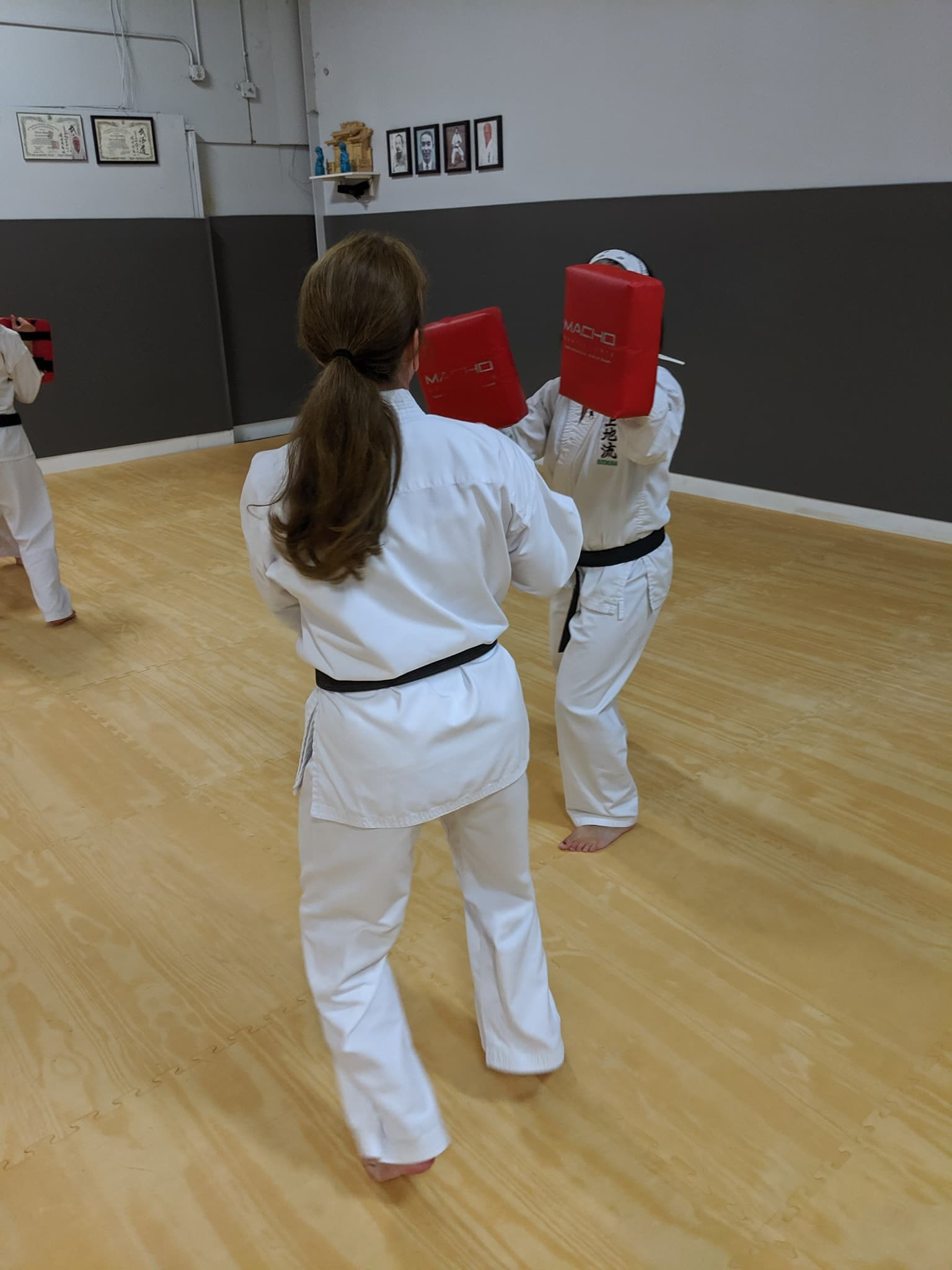 White Mountain Karate Gallery Photo Number 1