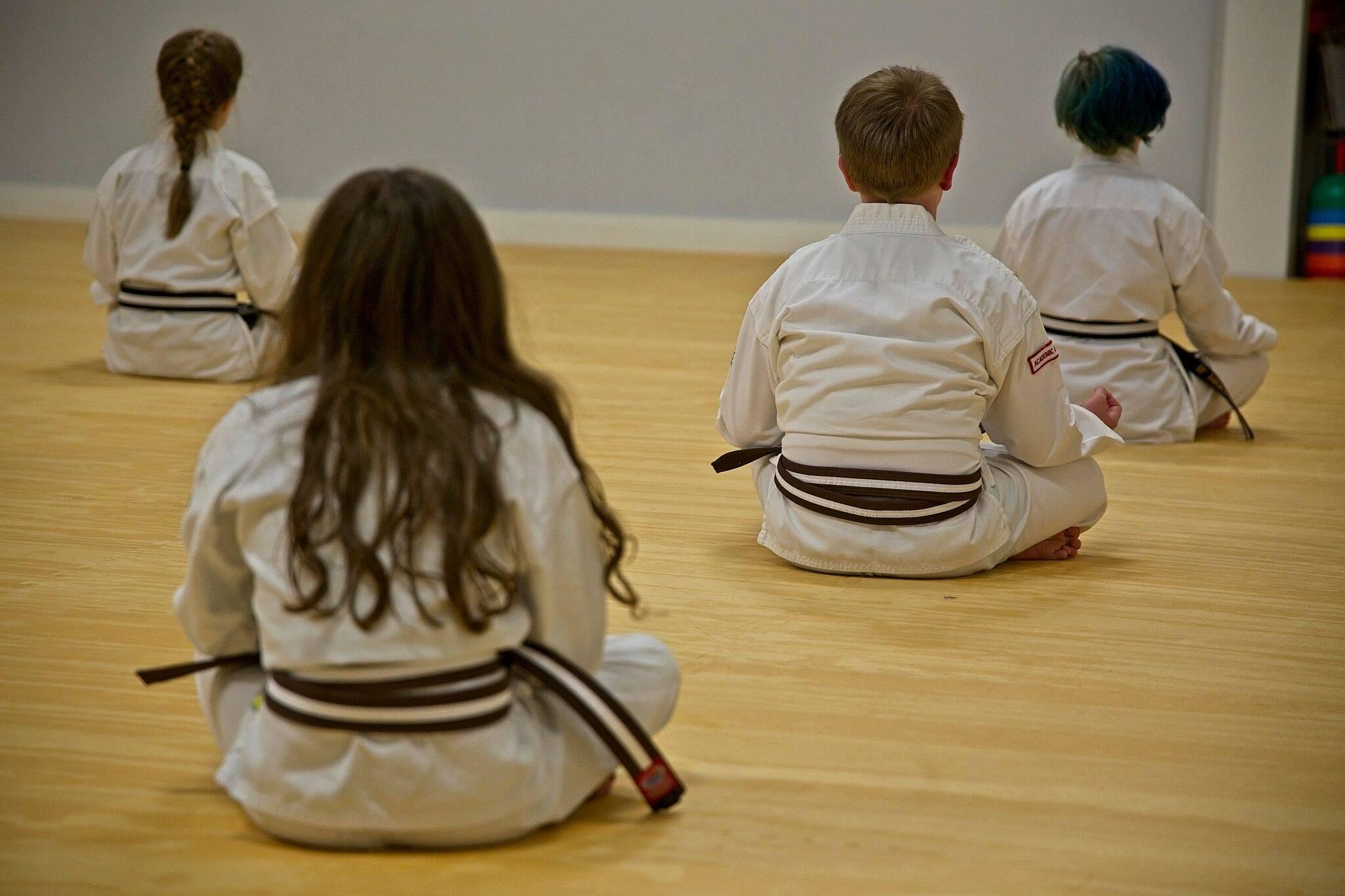 White Mountain Karate Little Warriors