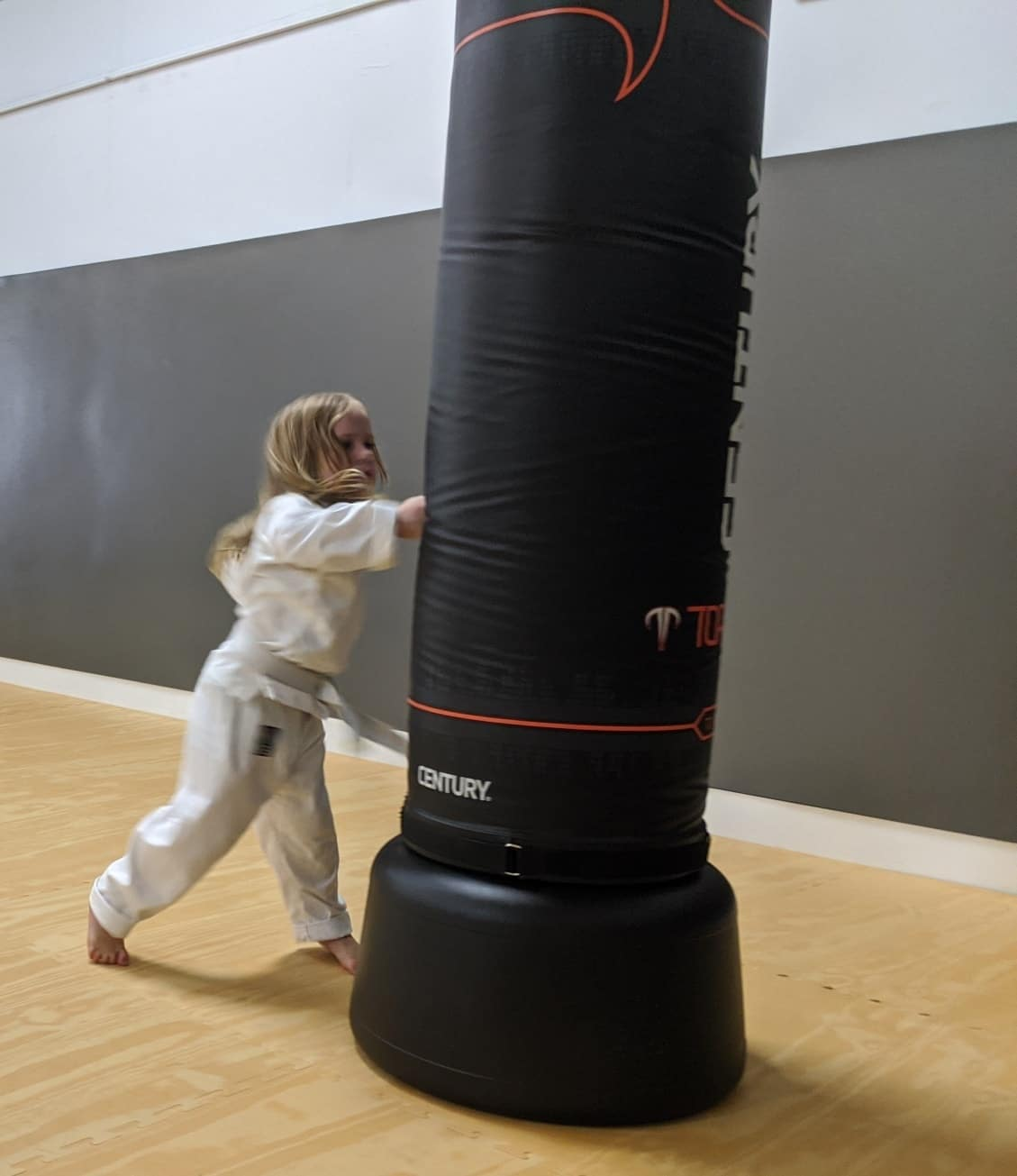 White Mountain Karate Gallery Photo Number 5